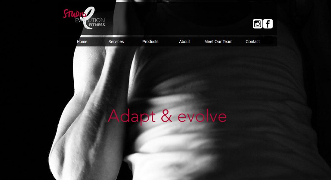 Studio-Evolution-Fitness-Balmain-Personal-Trainers